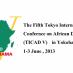 Africa Symposium 2013