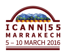 The IANA Transition and ICANN Marrakech
